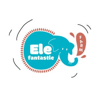 excursion coup de coeur : elephantastic