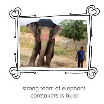 excursion-coup-de-coeur-web-elephant